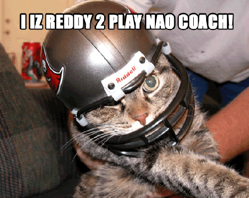 i-iz-reddy-to-play-nao-coach